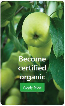 Cosmetics Certification